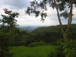 Monteverde vallons jungle